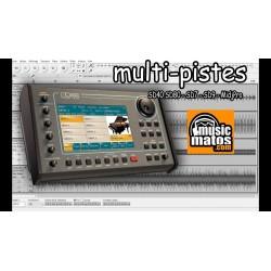 vidéo SD40 diffusion en multipistes audio