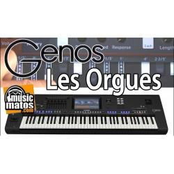 vidéo GENOS Les ORGUES