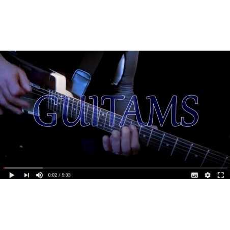 vidéo GUITAMS CONCEPT