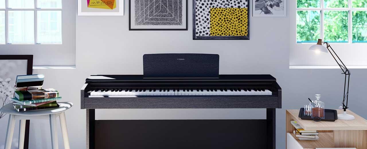 Tout l'univers du piano , pianos portables, numérique et de scène